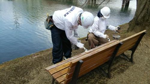 弘前公園さくら祭り開幕にむけ弘前塗装工業会ベンチ塗装ボランティア活動